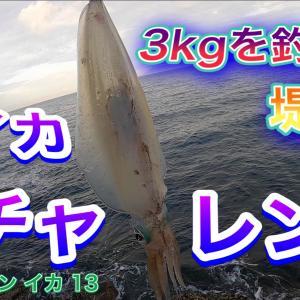 2021 ヤエン イカ 13 3kgを釣った堤防で春イカ チャレンジ 公開予告です