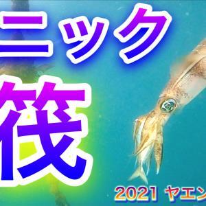 2021 ヤエン イカ 14 【パニック 筏】 公開予告です