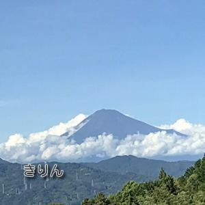 /^o^\昨日の富士山…静岡市清水区