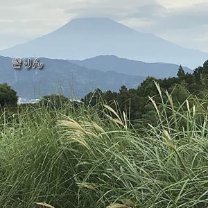 笠雲をかぶった富士山 /^o^\