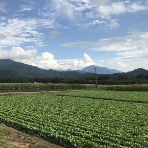 山梨県 清里の山と畑