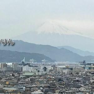 【絶景な穴場】薄曇りの日 杉原山から見た富士山