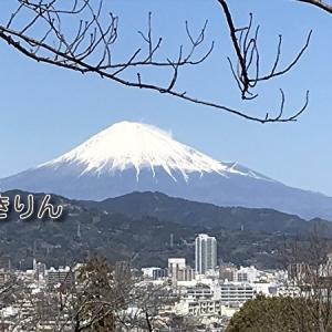 富士山 /^o^\