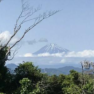 /^o^\ 今日の富士山と茶畑
