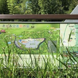 小鹿の森公園
