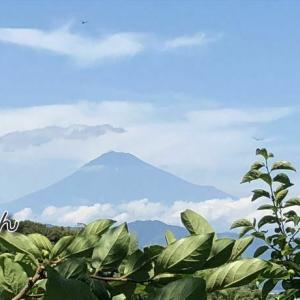 /^o^\ 夏の富士山とトンボ