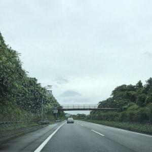 /^o^\ 雨の日の富士山 /^o^\