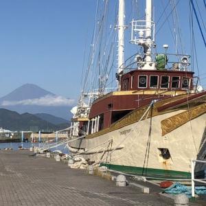⛵帆船と水上バス⛴と富士山…静岡市清水区清水港