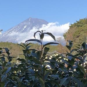 富士山とかぐや姫伝説