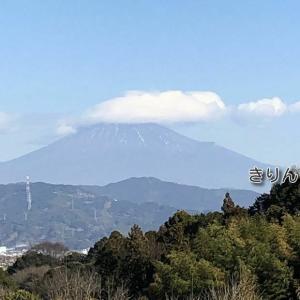 /^o^\ 8分間の富士山 /^o^\