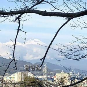 /^o^\ 富士山 真っ白になりました! /^o^\