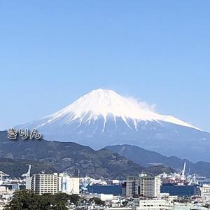 ⛰涼しげな 冬の富士山 /^o^\