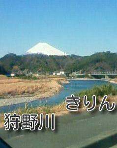 /^o^\わたぼうしの富士山と狩野川