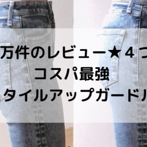 5万件のレビュー★4つのコスパ最強スタイルアップガードル