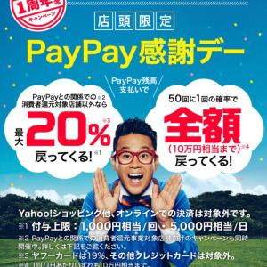 ~PayPay1周年~