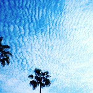 地震雲ってあるの?うろこ雲との違いは?徹底解説!