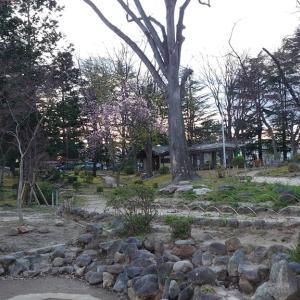 07/06(月)「紅葉山公園(福島市)」放射線量マップ