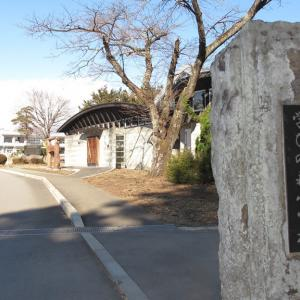 07/15(水)「学びの森小学校[旧 大島小学校](栃木県那須町)」周辺 放射線量マップ