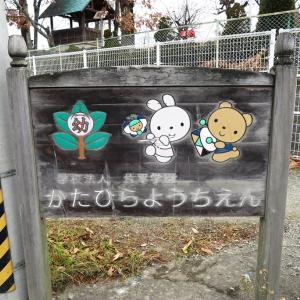 07/04(日)「片平幼稚園(郡山市)」周辺 放射線量マップ