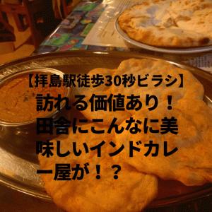 【拝島駅徒歩30秒ビラシ】訪れる価値アリ!田舎にこんなに美味しいインドカレー屋が!?