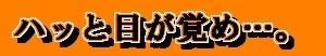 【和と動Ⅱ<107>:●】ハッと目が覚め…。(10月25日)
