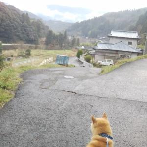 里さんぽ  小川の道<br />