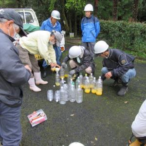 スズメバチ捕獲器作成と設置、徳山桜周辺の草刈り