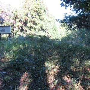 展望台と徳山桜周辺の草刈り作業