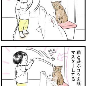 1歳児にして猫マスター