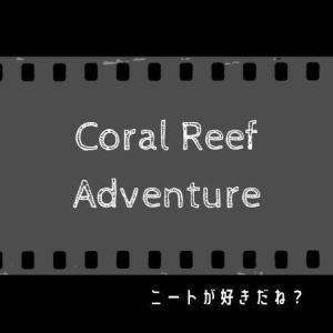 『サンゴ礁の冒険』のサンゴから環境問題を学ぶ