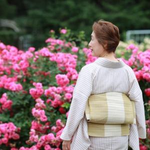 初夏の薔薇は2番花・・・