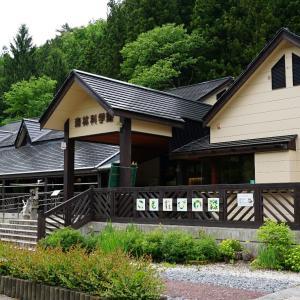 こもれびの森森林科学館(栗原市花山)