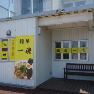 麺屋一魂のニボ魂醤油ラーメン(迫町)