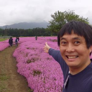 信州の風景 キムレイ通心おかげさまで 129号目 今月は一面ピンクの。。。