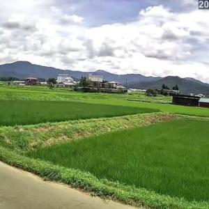 ただいまの信州伊那谷の風景。 いっきに。。。?