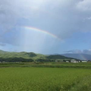 ただいまの信州伊那谷の風景。