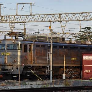 鍋島貨物駅に佇むEF81303号機