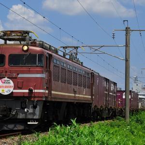 HM付き~EF81717号機