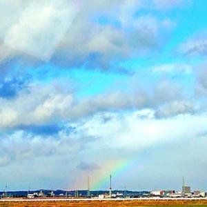 「虹」って、なんで「虹」??