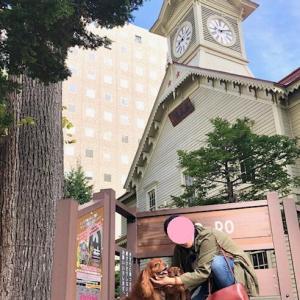 札幌でだい&しょう君達に会いました!