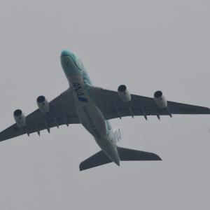 成田路(ANA A380が飛ぶ)+もおか路(中舘付近 白煙で通り過ぎる)