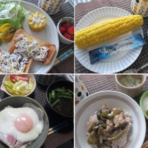 ・7月前半のおうちご飯(小4男児のごはん、おやつ、父ちゃん弁当)