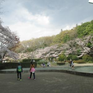 ●息子とお出掛け● 芹ヶ谷公園(町田市)