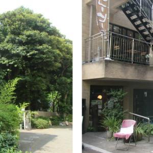 狛江のお店 「泉の森カフェ」カフェ