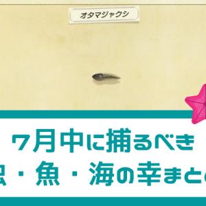 【あつ森】北半球で7月中に捕っておくべき虫・魚・海の幸【攻略】