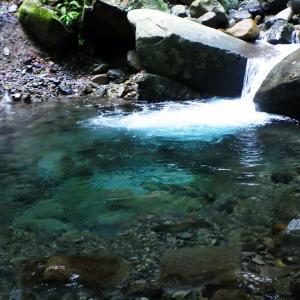 渓魚を求めて秋口の山を徘徊