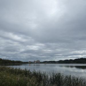 10月14日の佐鳴湖畔 少し秋めいて