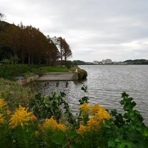 10月21日の佐鳴湖畔 再び台風接近
