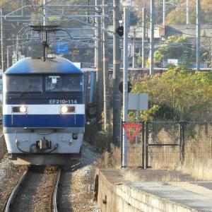 岡山地区のEF210牽引の貨物列車