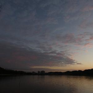 1月7日の佐鳴湖畔 朝焼けが見られました